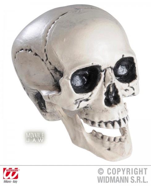 Totenkopf 25 cm